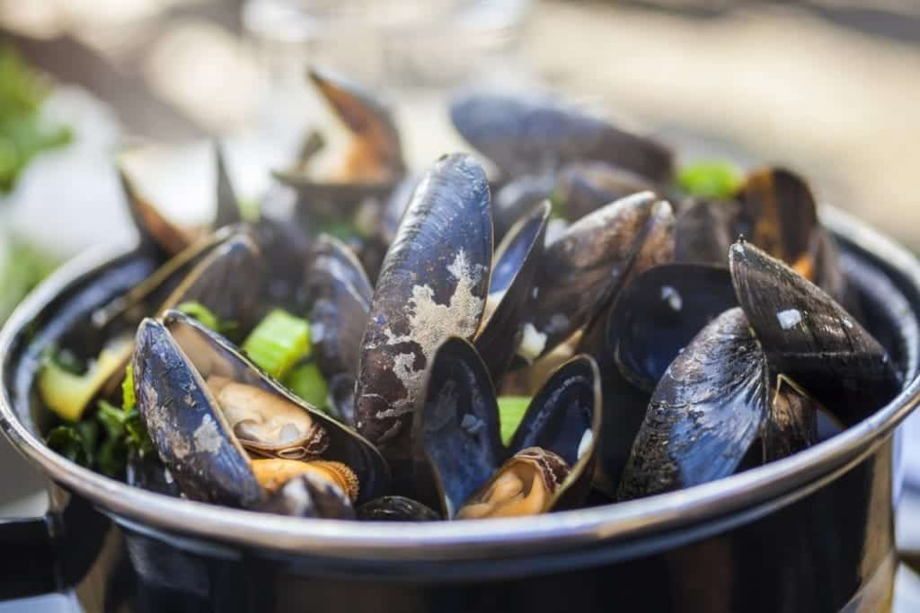 Moules a go-go bar and bistro plate of mussels