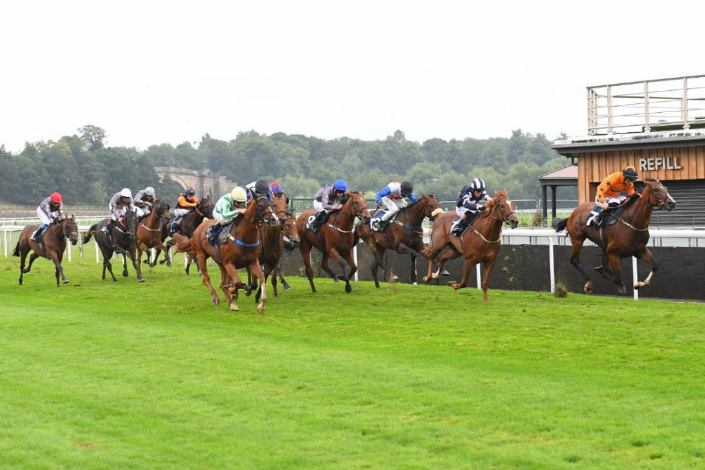 The Biggest Field Of The Day In The School Of Hard Knocks Handicap Stakes