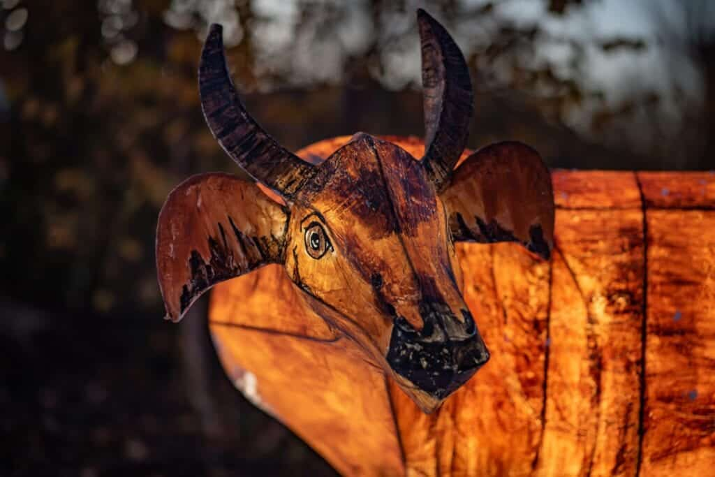The Lanterns At Chester Zoo 2020 Antelope Scaled.jpg