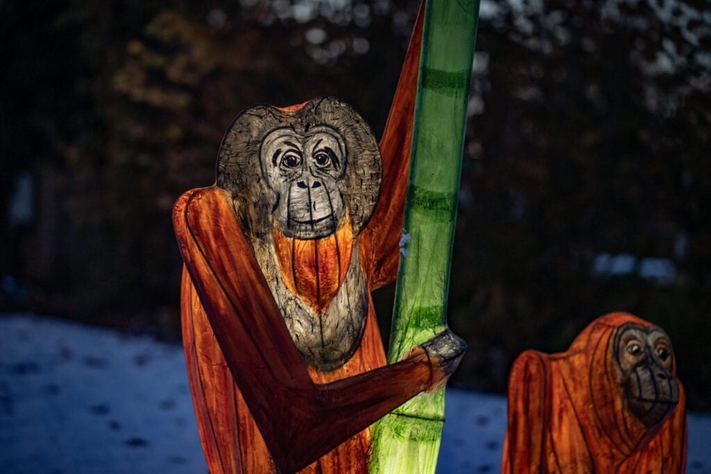 The Lanterns At Chester Zoo 2020 Create Family Memories This Christmas Scaled.jpg