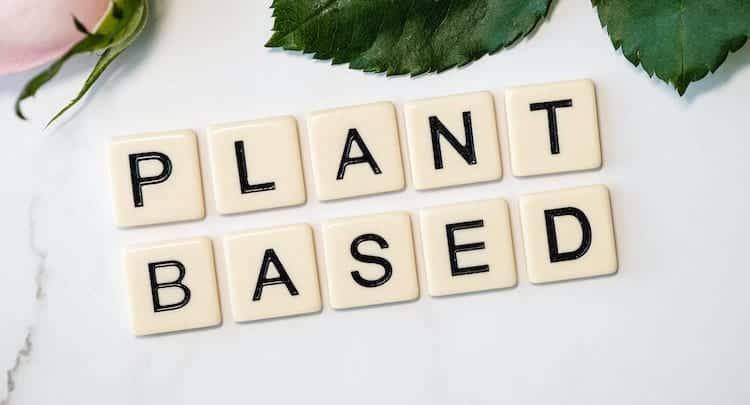 Vegan Restaurants Chester Plant Based Options Chester Restaurants