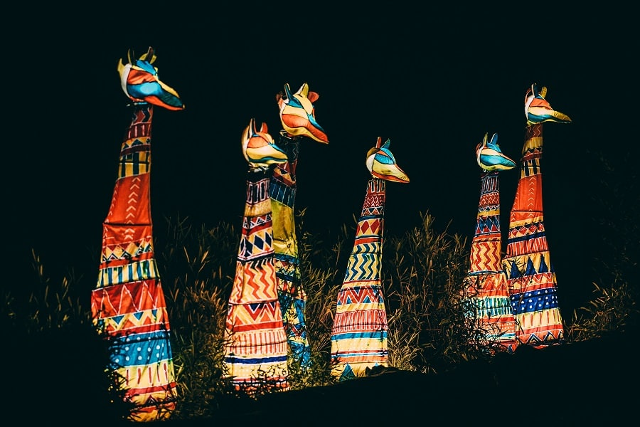 chester zoo the lanterns return this christmas at chester zoo